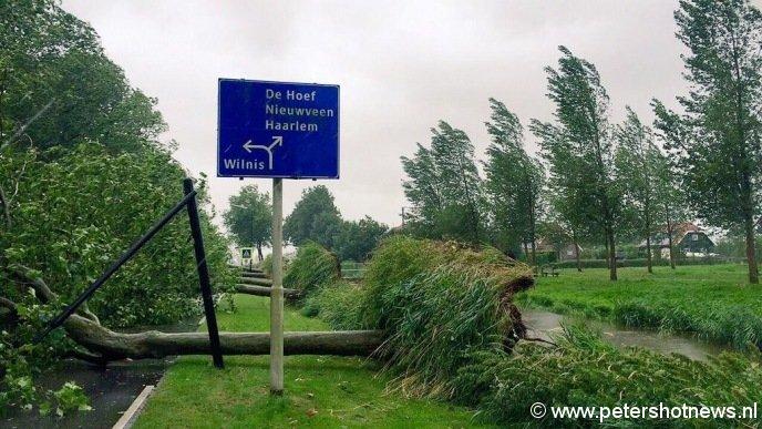 Rij bomen omgevallen op Dr van der Haarlaan Mijdrecht bij de Oosterlandweg, foto: stefan meilof