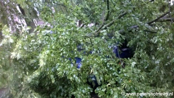 Auto onder een boom, Viergang Mijdrecht, foto Sandra van Ooijen