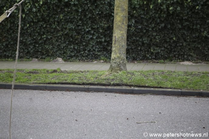 Gemeeneland Vinkeveen, de boom kwam los